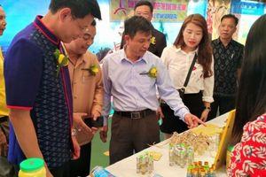 Quảng Bình: 5 doanh nghiệp tham gia hội chợ triển lãm hàng hóa tại Thái Lan