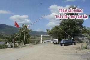 Trạm Kiểm lâm cửa rừng Đăk Pơ Kơ 'thả cửa' cho lâm tặc