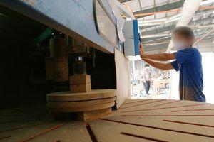 Phát hiện nhiều gỗ nhập lậu 'đeo mác' xuất xứ Việt Nam