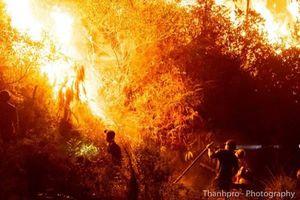 Lại cháy rừng dữ dội ở Hà Tĩnh do người dân đốt thực bì