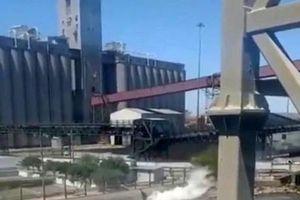 Mexico: 3.000 lít axit tràn ra Vịnh California gây thảm họa môi trường