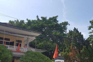 Bi hài ở Thừa Thiên - Huế: Phòng giáo dục thu tiền các trường học đón 'hụt' đoàn kiểm tra của Bộ