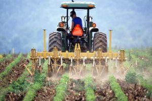Ông Trump thất vọng vì Trung Quốc chưa mua hàng nông sản như đã hứa