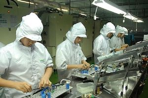 TP.HCM phụ cấp tối đa 1 tỉ đồng cho người có tài năng đặc biệt