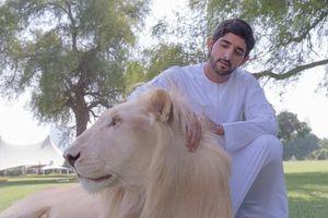 Choáng ngợp với thú chơi xa xỉ của Hoàng tử Dubai