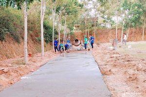 Sinh viên tình nguyện giúp dân làm đường bê tông