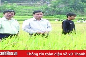 Dân vận khéo trong đồng bào dân tộc thiểu số ở huyện Mường Lát