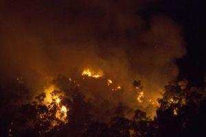 Cháy lớn ở núi Bà Hỏa nằm giữa TP Quy Nhơn