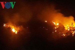 Cháy rừng giữa đêm ở Bình Định, dân chạy tán loạn