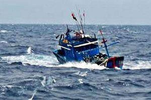 Quảng Ngãi: Điều phương tiện hỗ trợ tàu cá và 6 ngư dân bị nạn