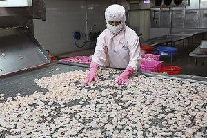 Giảm mạnh tại 5 thị trường chính, xuất khẩu tôm có hồi phục nửa cuối năm?