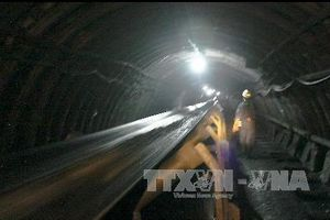 TKV mở rộng việc sử dụng than pha trộn cho các hộ điện