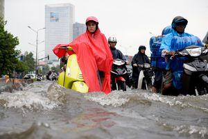 TP Hồ Chí Minh lắp đặt thí điểm trạm quan trắc và cảnh báo ngập qua ứng dụng