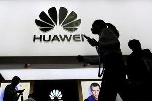 Hoạt động khó khăn sau lệnh cấm, Huawei tính sa thải hàng trăm nhân viên tại Mỹ