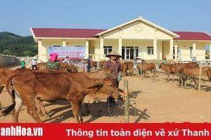 Mang niềm vui đến cho hội viên, phụ nữ xã Xuân Thái