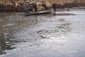 Cá ở hồ thủy điện Sông Tranh 2 bỗng nhiên chết trắng