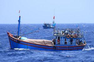 Phớt lờ quy định, nhiều tàu cá không thực hiện lắp đặt thiết bị giám sát hành trình