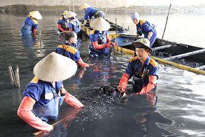 Công nhân dầm mình dưới bùn làm sạch sông Tô Lịch