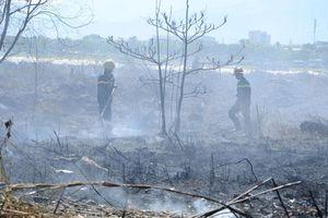 Dập tắt đám cháy trên núi Sơn Trà