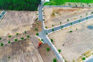 HĐND Bà Rịa-Vũng Tàu: Làm rõ trách nhiệm của chính quyền trong việc quản lý đất đai