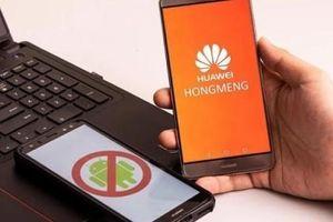 Huawei tung hỏa mù về hệ điều hành 'cây nhà lá vườn' HongMeng