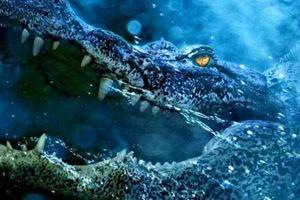 5 bộ phim về cá sấu 'săn' người đáng xem nhất trên màn ảnh