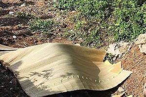 Thanh Hóa: Phát hiện nam thanh niên tử vong cạnh xe máy ở khu đất trống