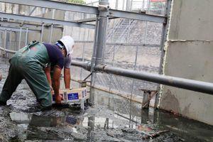 Xin lùi ngày lấy mẫu nước sông Tô Lịch do ảnh hưởng việc xả nước từ Hồ Tây