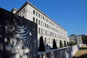 WTO sẽ giải quyết 'cấm vận' giữa Nhật Bản và Hàn Quốc như thế nào?