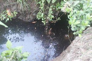 TP Cà Mau: Người dân bất an vì nguồn nước ô nhiễm rỉ từ Nhà máy xử lý rác