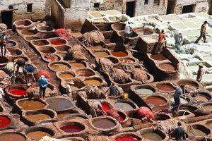 Công nhân thuộc da Bangladesh yêu cầu ngành công nghiệp thân thiện với môi trường