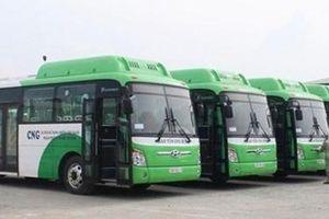 Hà Nội chấp thuận mở mới 21 tuyến buýt
