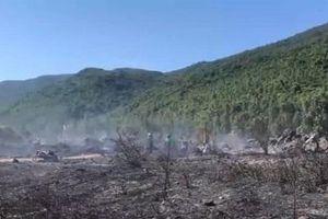 Cháy rừng bạch đàn trên bán đảo Sơn Trà