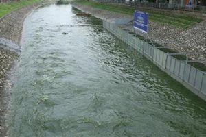 Thêm 2 tháng làm sạch sông Tô Lịch: Điểm nghi vấn lớn