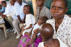 Nạn đói đe dọa hơn 800 triệu dân