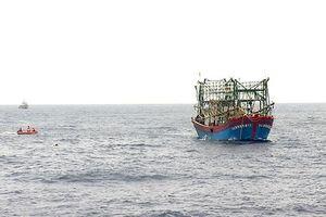 Vụ 9 ngư dân mất tích: Tối nay đưa hai thi thể vừa phát hiện về Nghệ An