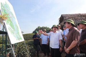 Chủ tịch UBND tỉnh kiểm tra tiến độ Dự án khu du lịch hỗn hợp và nghỉ dưỡng Cầu Cau