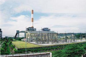 Nhiệt điện Phả Lại đặt kế hoạch kinh doanh 'lùi lại'