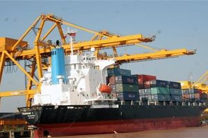 IMF dự báo tăng trưởng GDP Việt Nam dưới mục tiêu đề ra