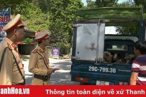 Huyện Lang Chánh: Ngăn chặn xe chở 10 con lợn chưa rõ nguồn gốc đi vào địa bàn