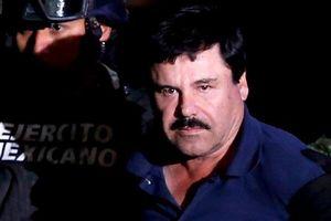 Trùm ma túy El Chapo bị kết án chung thân và phải nộp lại 12,6 tỷ USD
