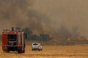 Thời tiết khắc nghiệt gây cháy hàng loạt tại Israel