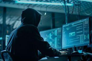 Hacker đánh cắp hàng triệu thông tin của Bulgaria là fan của nhà sáng lập WikiLeaks