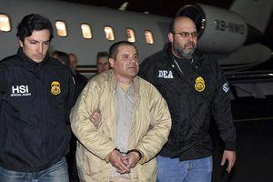 Trùm ma túy El Chapo lĩnh án chung thân tại Mỹ