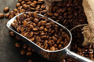 Giá cà phê hôm nay 18/7: Tăng trở lại 500 đồng/kg