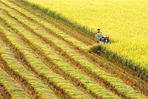 Thụy Sỹ tài trợ 1,45 tỷ đồng giúp Việt Nam quản trị các vựa lúa bằng công nghệ viễn thám