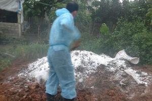 Yên Thế: Đẩy mạnh các giải pháp ngăn, phòng chống dịch tả lợn châu Phi