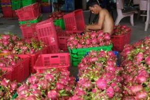 Nông sản xuất sang Trung Quốc sụt giảm báo động: Tất yếu