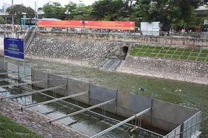 Nỗ lực cứu sông Tô Lịch