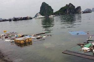 Vịnh Hạ Long mỗi ngày phải 'gánh' 7 tấn rác thải